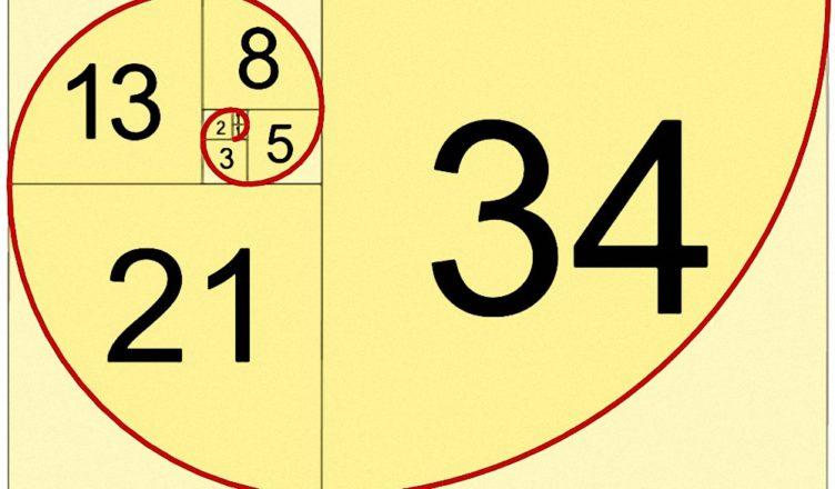 fibonacci-spiral_r